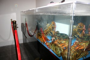Choose you own Lobster @ The Third Crossing